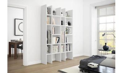 fif möbel Standregal »Toro« kaufen