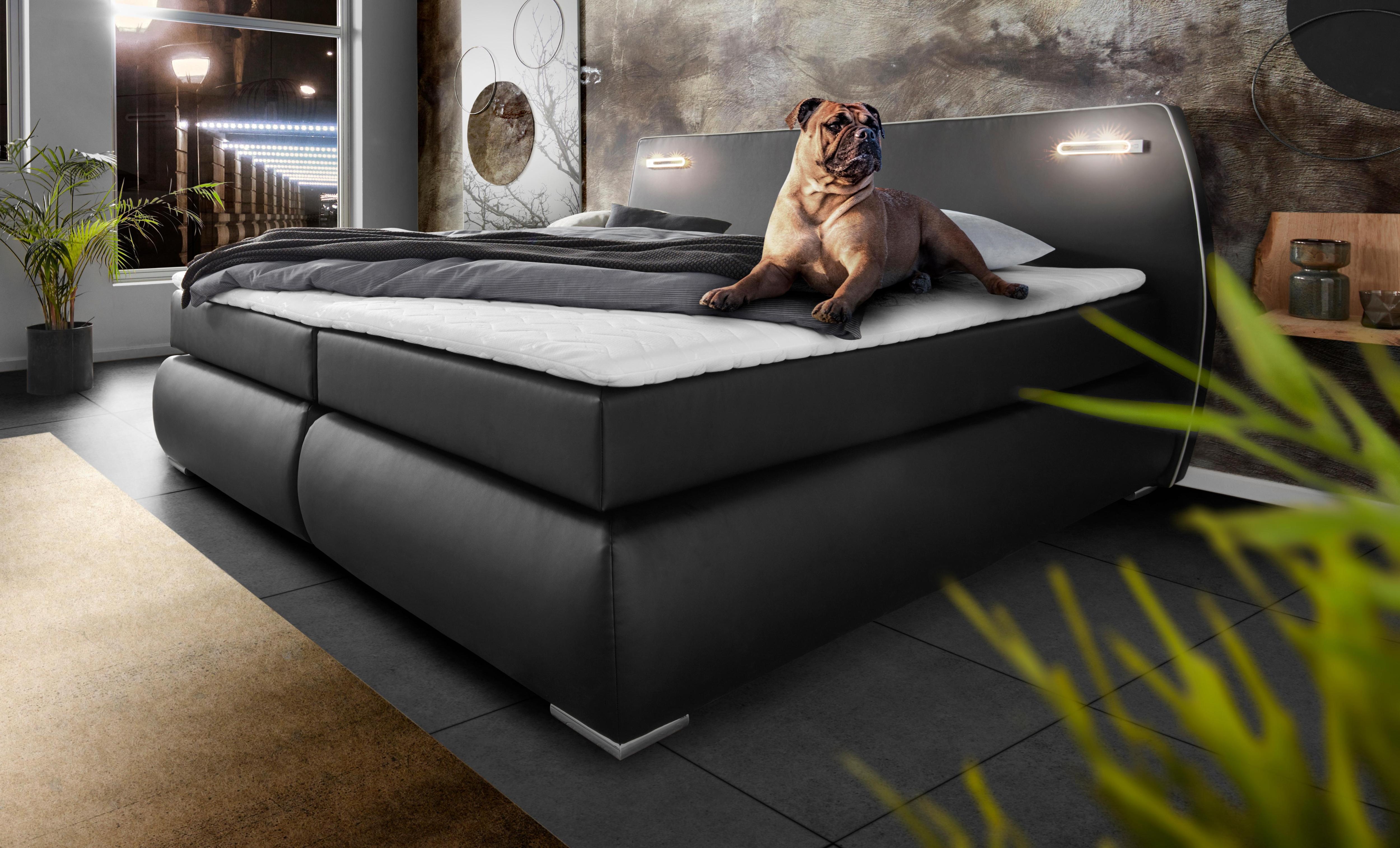 INOSIGN Boxspringbett »Black&White«, auch in Übergröße 200/220 cm, incl. LED-Beleuchtung im Kopfteil | Schlafzimmer > Betten > Boxspringbetten | Federn - Strukturstoff - Kunstleder | INOSIGN