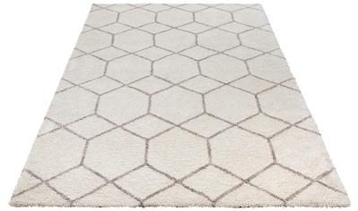 Hochflor - Teppich, »Lasar«, my home, rechteckig, Höhe 25 mm, maschinell getuftet kaufen