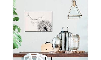 Reinders! Wandbild »Slim Frame Black 50x70 Dandelion« kaufen