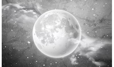 Consalnet Vliestapete »Mond auf Beton«, Motiv kaufen