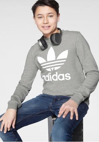 adidas Originals Sweatshirt »TREFOIL CREW« kaufen
