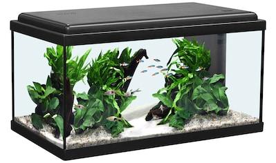 AQUATLANTIS Aquarium »Advance 60 LED«, 54 Liter, BxTxH: 60x30x34 cm, schwarz kaufen