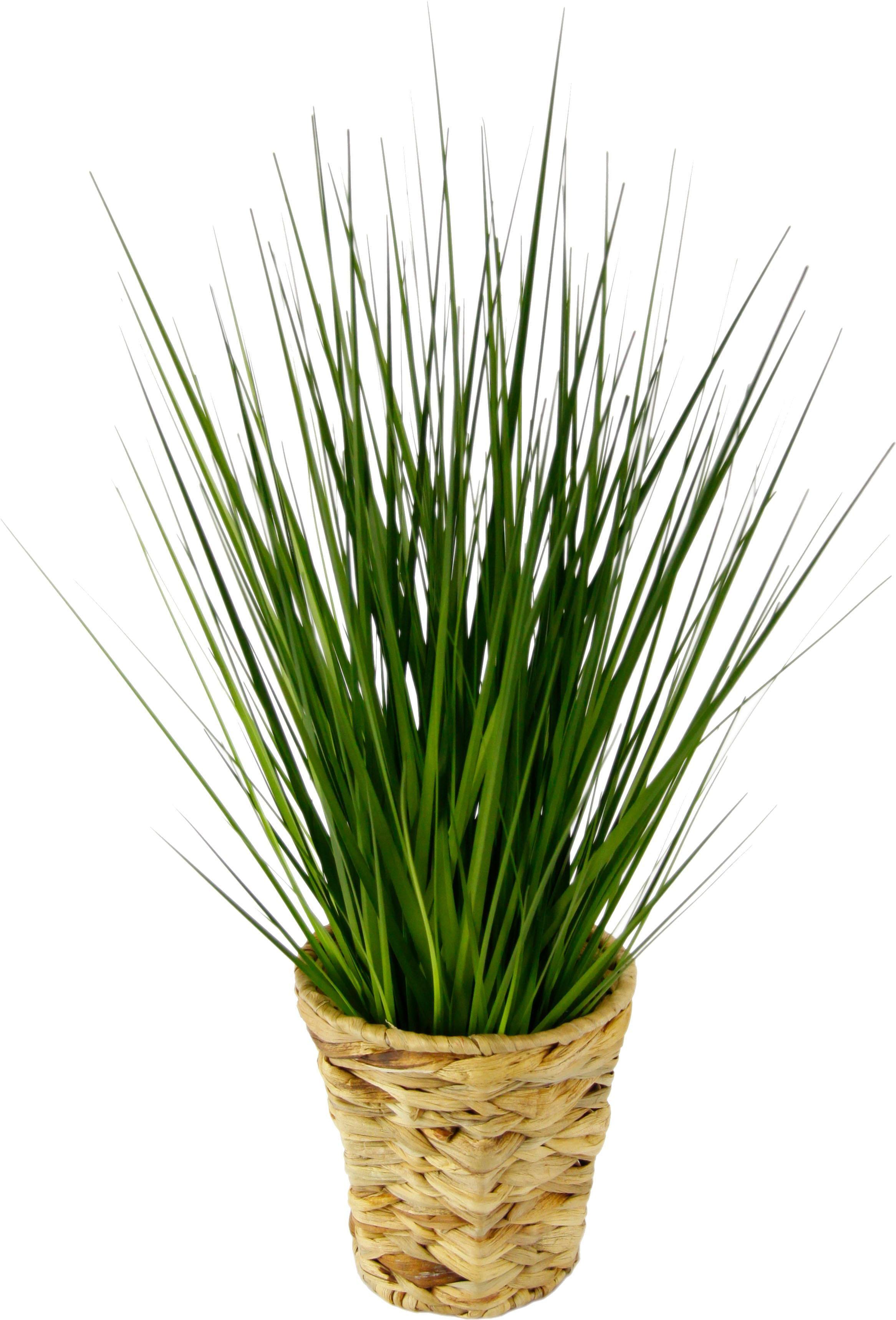 Kunstpflanze Technik & Freizeit/Heimwerken & Garten/Garten & Balkon/Pflanzen/Kunstpflanzen/Kunst-Gräser