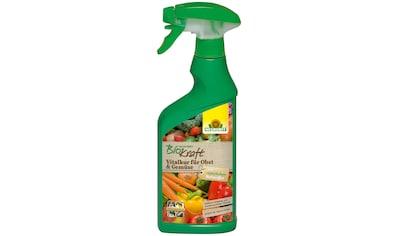 Neudorff Pflanzenstärkungsmittel »BK Vitalkur für Obst & Gemüse«, 0,5 l kaufen