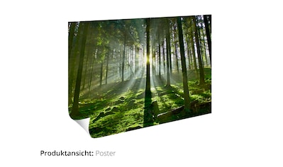 Artland Wandbild »Asiatischer Bambuswald« kaufen