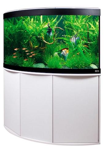 FLUVAL Aquarien-Set »Venezia 350 mit App-Steuerung« kaufen