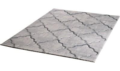 Teppich, »Lorena 2904«, Sanat, rechteckig, Höhe 13 mm, maschinell gewebt kaufen