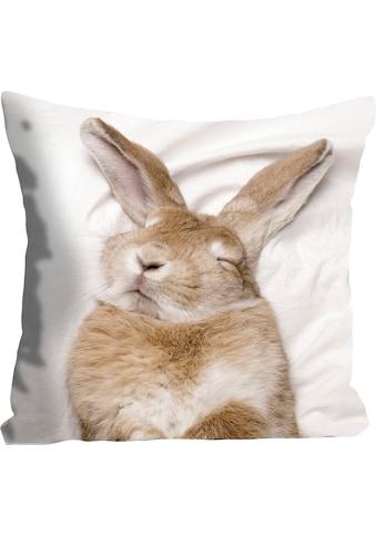 queence Kissenhülle »Ketut«, (1 St.), mit einem schlafenden Hasen kaufen