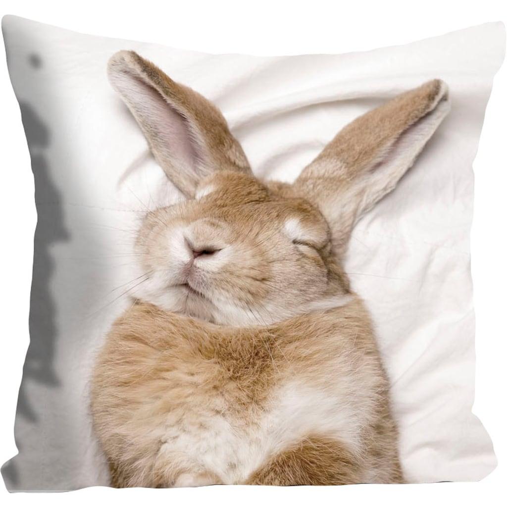 queence Kissenhülle »Ketut«, (1 St.), mit einem schlafenden Hasen