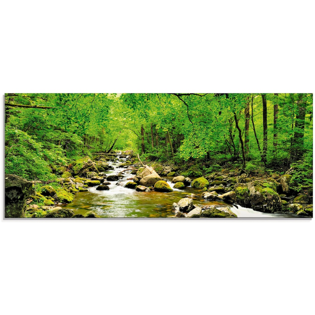 Artland Glasbild »Herbstwald Fluss Smolny«, Wald, (1 St.)