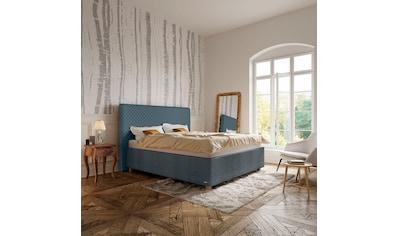 Schlaraffia Polsterbett »Arabella«, Kopfteil Aqua, Holzfuß Eiche kaufen