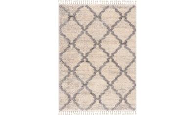 Hochflor - Teppich, »Versay«, Sanat, rechteckig, Höhe 30 mm, maschinell gewebt kaufen