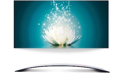 Artland Wandbild »Magie der Lotus-Blume«, Blumen, (1 St.), in vielen Größen & Produktarten - Alubild / Outdoorbild für den Außenbereich, Leinwandbild, Poster, Wandaufkleber / Wandtattoo auch für Badezimmer geeignet kaufen