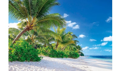 Komar Fototapete »Reunion«, bedruckt-Meer-Wald, ausgezeichnet lichtbeständig kaufen