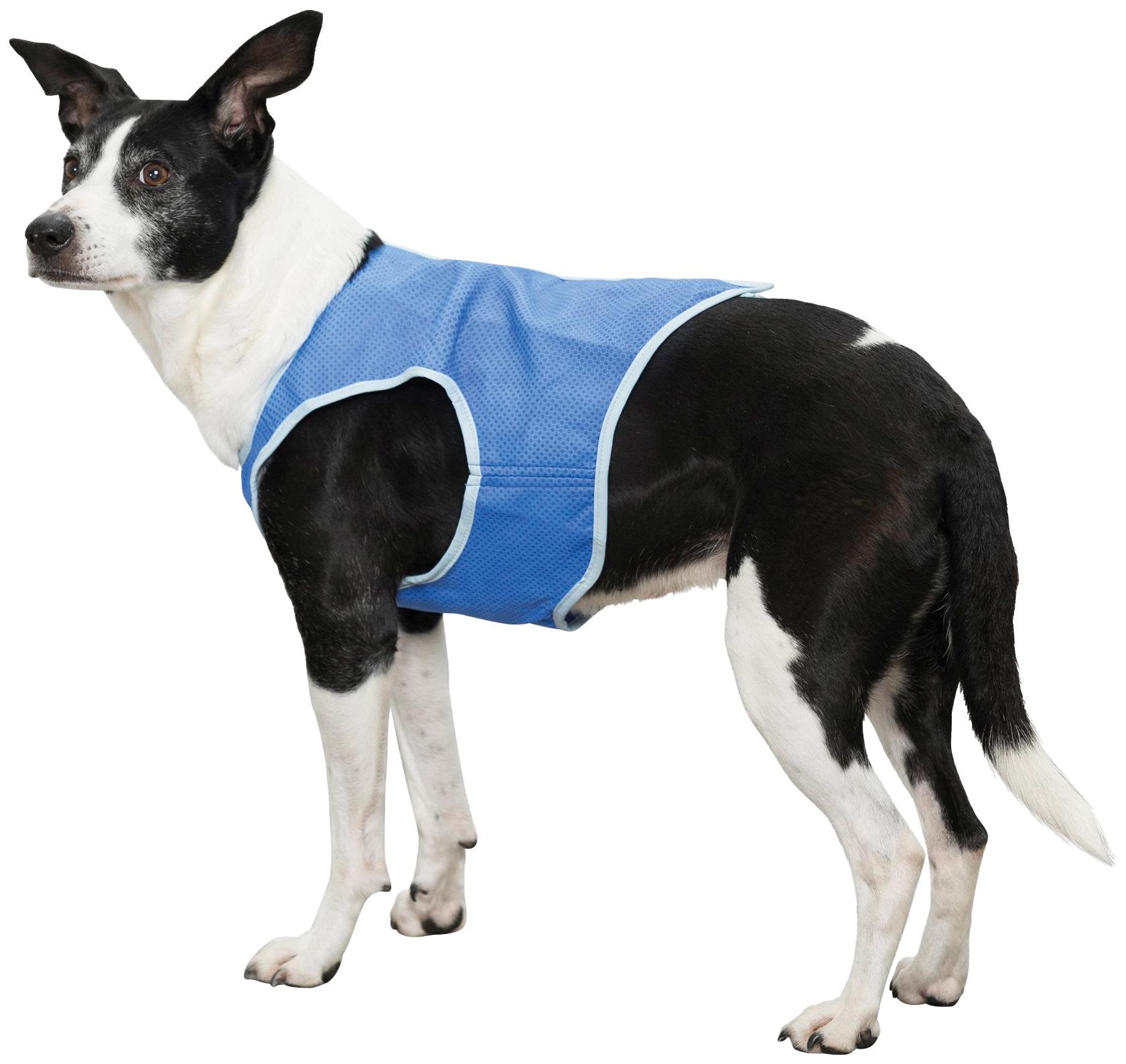 TRIXIE Hundeweste, Kunststoff, mit Kühlfunktion, in versch. Größen blau Hundeweste Hundebekleidung Hund Tierbedarf