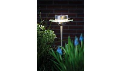 Paulmann Gartenleuchte »Outdoor Solarspieß Special Line Ufo LED Edelstahl«, Warmweiß kaufen