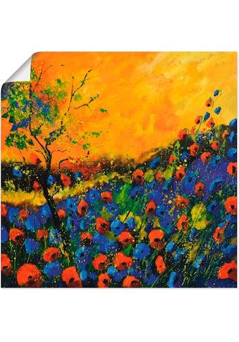 Artland Wandbild »Rot und Blau«, Blumenwiese, (1 St.), in vielen Größen & Produktarten... kaufen
