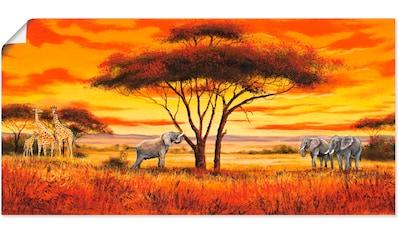 Artland Wandbild »Afrikanische Landschaft II« kaufen