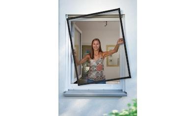 SCHELLENBERG Insektenschutz-Fenster »PREMIUM«, BxH: 140x150 cm, anthrazit kaufen