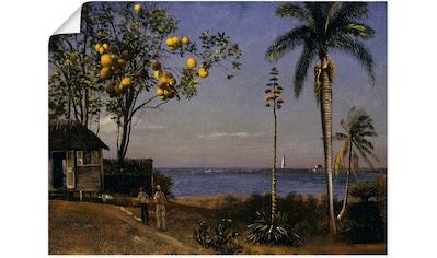 Artland Wandbild »Tropische Landschaft.« kaufen