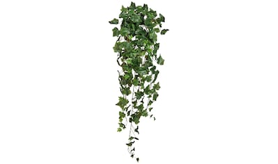 Creativ green Kunstranke »Englischer Efeuhänger« (1 Stück) kaufen