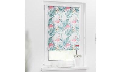 LICHTBLICK Seitenzugrollo »Rollo Klemmfix, ohne Bohren, Verdunkelung, Flamingo - Rosa Grün«, verdunkelnd, Verdunkelung, freihängend kaufen