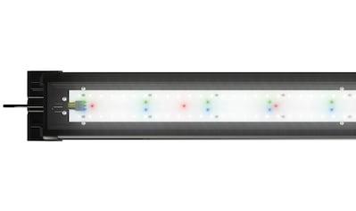 JUWEL AQUARIEN,LED Aquariumleuchte»HeliaLux Spectrum 550«, kaufen