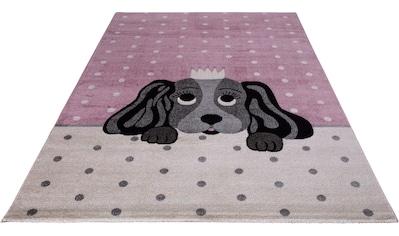 Festival Kinderteppich »Candy 156«, rechteckig, 11 mm Höhe, Motiv Hund kaufen