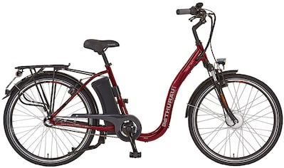 Didi THURAU Edition S-Pedelec »Alu City Rad-Roller 3in1 Plus« kaufen