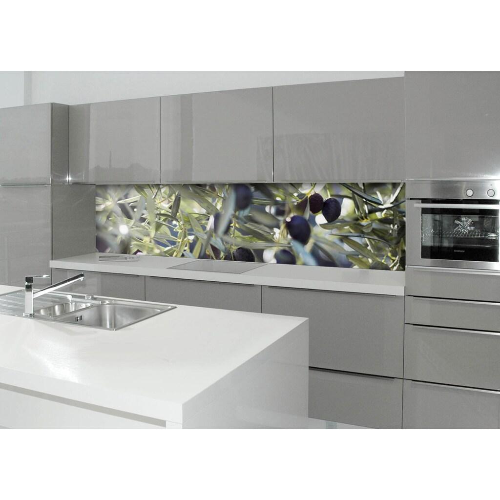 Küchenrückwand - Spritzschutz »profix«, Olivenbaum, 220x60 cm
