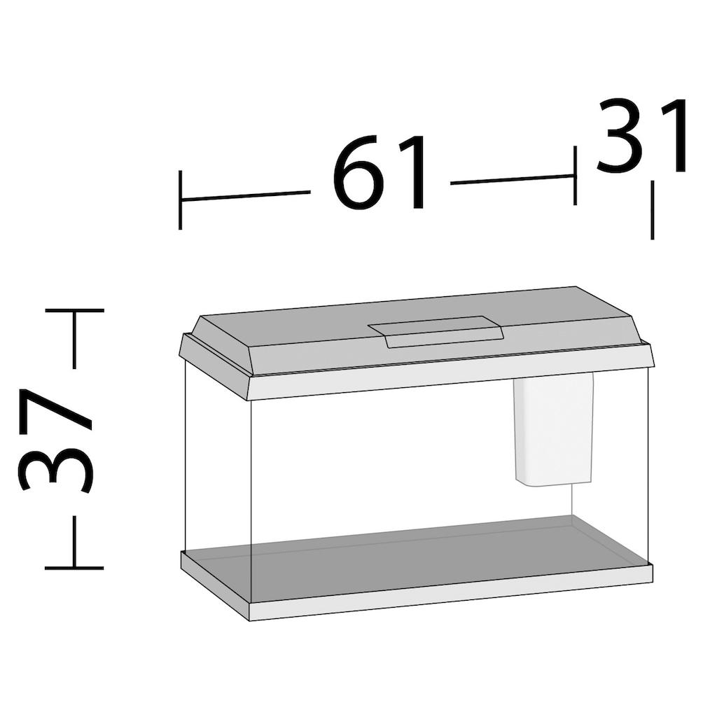 JUWEL AQUARIEN Aquarium »Primo 60«, BxTxH: 61x31x37 cm, 60 l
