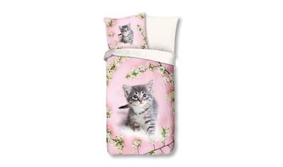 TRAUMSCHLAF Bettwäsche »Katze«, mit niedlichem Katzenmotiv kaufen