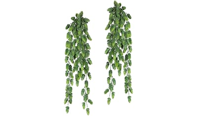 Creativ green Kunstranke »Hopfenhänger« kaufen
