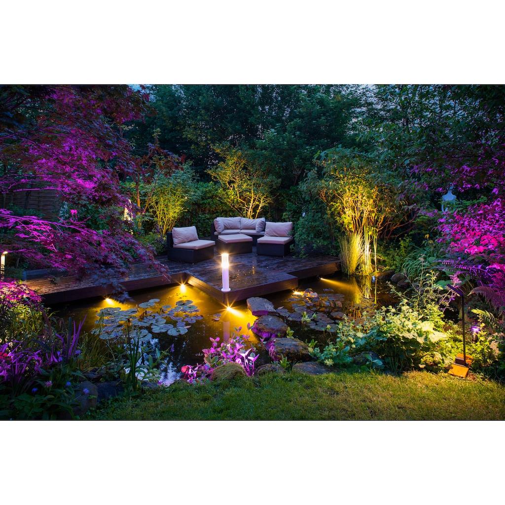 Heissner LED Gartenstrahler »Spot Smart Lights L433-00«