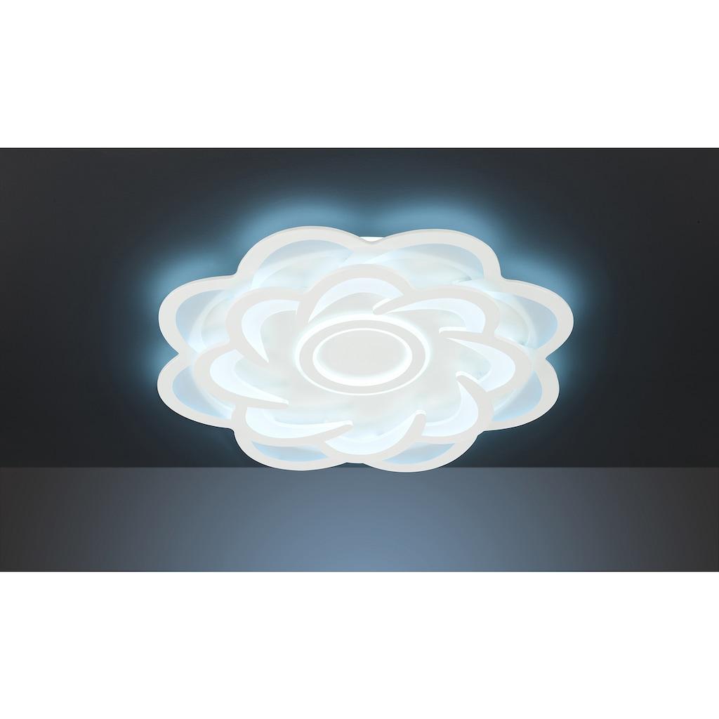 WOFI Deckenleuchte »Ica«, LED-Modul