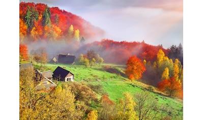 Papermoon Fototapete »Autum Mountain Village« kaufen