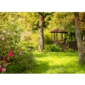 Papermoon Fototapete »Magic Garden«