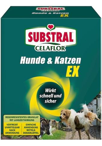 Scotts Substral Tierfernhaltemittel »Celaflor Hunde & Katzen EX« kaufen