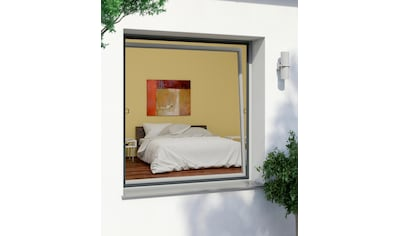 Windhager Insektenschutz-Fenster »RHINO«, BxH: 100x120 cm kaufen