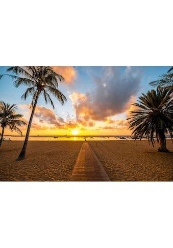 Papermoon Fototapete »Santa Cruz Beach«, Vliestapete, hochwertiger Digitaldruck kaufen