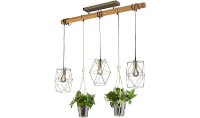 TRIO Leuchten,Pendelleuchte»Plant«, kaufen