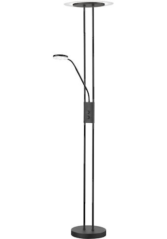 FISCHER & HONSEL,LED Stehlampe»Fluente«, kaufen