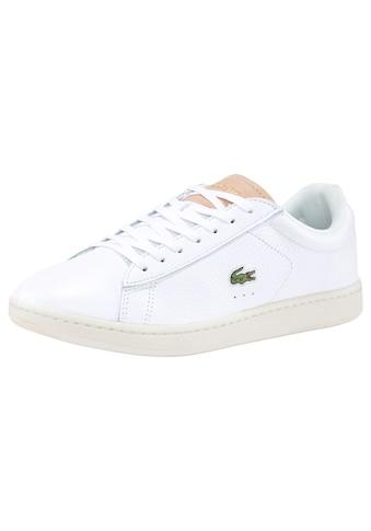 Lacoste Sneaker »CARNABY EVO 0120 3 SFA« kaufen