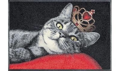 wash+dry by Kleen-Tex Fußmatte »Royal Cat«, rechteckig, 7 mm Höhe, Schmutzfangmatte,... kaufen