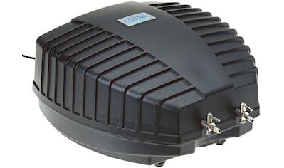 OASE Teichbelüfter »AquaOxy 2000« kaufen