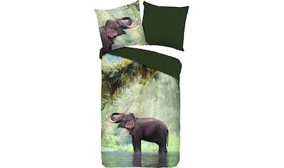 PURE luxury collection Wendebettwäsche »Laughing«, mit Elefant kaufen