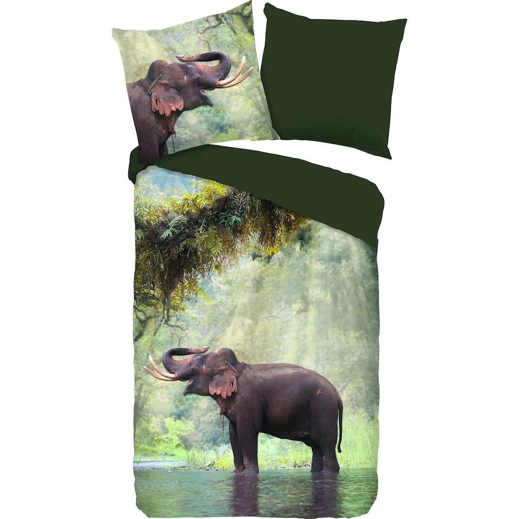 PURE luxury collection Wendebettwäsche »Laughing«, mit Elefant
