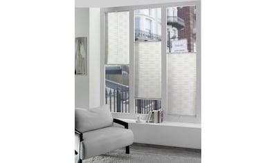 DELAVITA Plissee nach Maß »SP5056 D«, Lichtschutz, verspannt kaufen