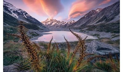 Komar Fototapete »Momentum Lord of the Mountains«, mehrfarbig-natürlich-bedruckt kaufen